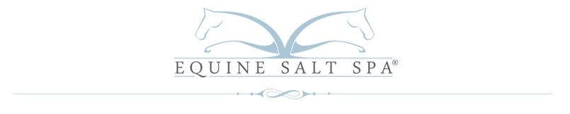 Equine Salt Spa header